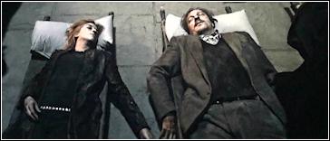 De Slag om Zweinstein -- Remus & Tonks dood.png