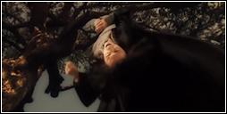 Herinnering van Severus Sneep (De Slag om Zweinstein) - Sneep wordt gepest door James (HER 7).png