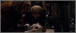 Slag om Zweinstein -- De dood van Fred.JPG